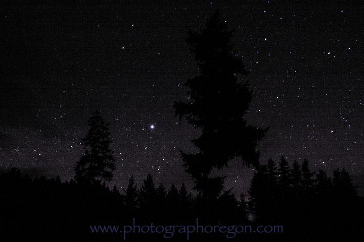 Owling stars