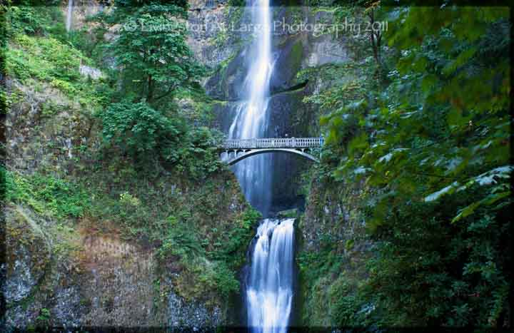 Photograph Oregon