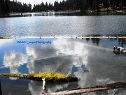 Magone Lake