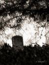 Hobson-Whitney Cemetery