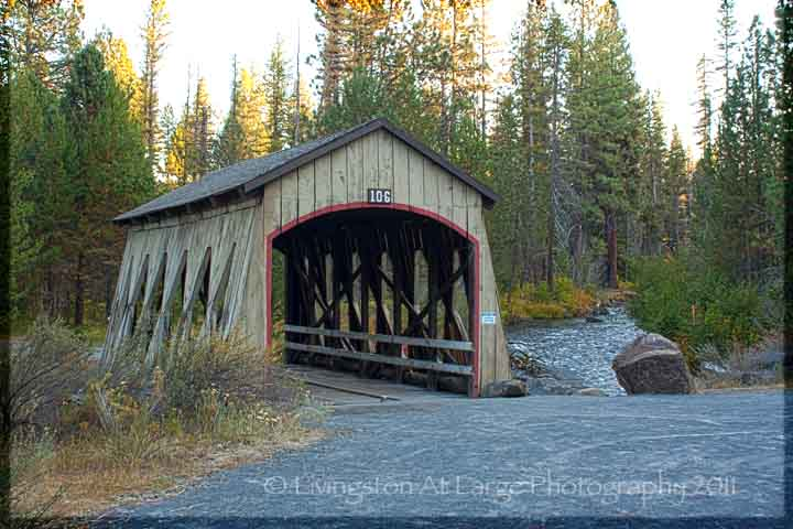 Oregon Covered Bridges-Shevlin Park