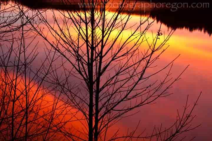 Oakridge Oregon sunset