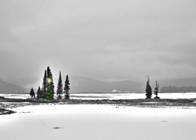 Merry Christmas from Sparks Lake