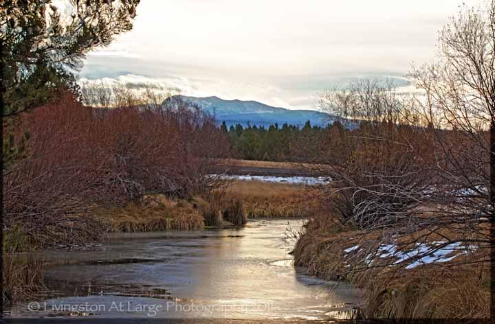 salt creek waterfalls oregon photograph
